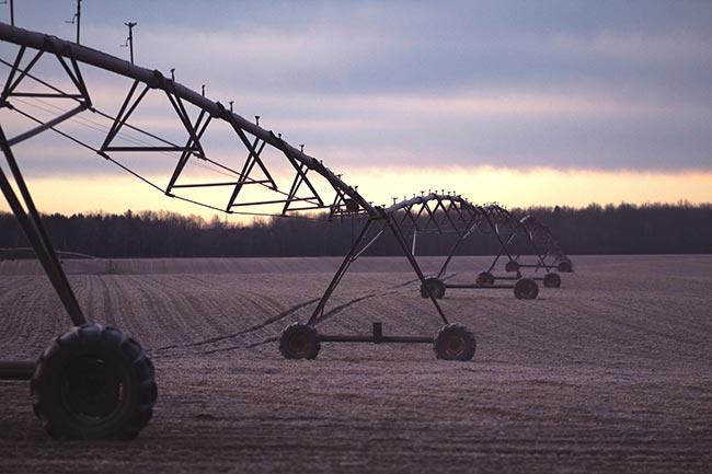 Western Priorities in the 2018 Farm Bill